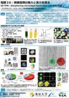 『電顕3D:微細藻類の魅力と実力を探る(2017.2.15)』の画像