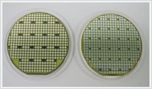 『SiC素子量産試作品(3インチウエハ)』の画像