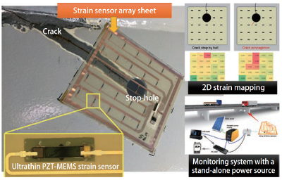 『Strain sensor array sheet』の画像